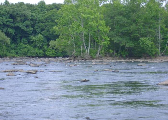 Longtime advocate reflects on health of catawba river for Catawba river fishing