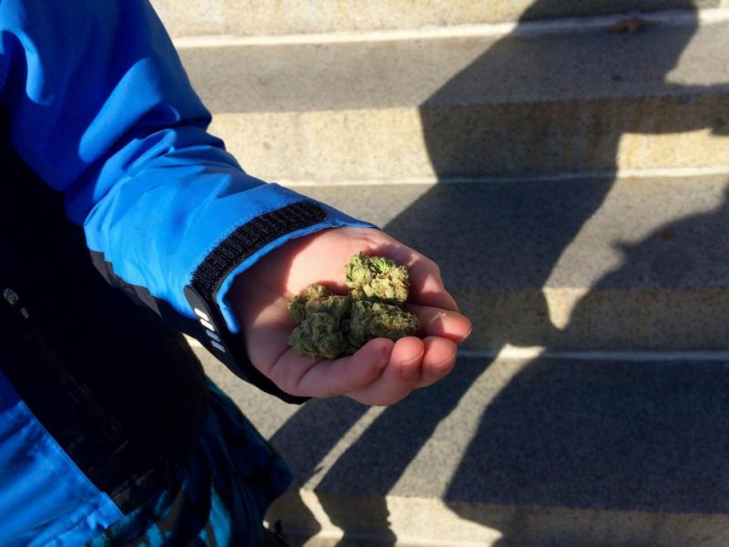 Marijuana activists celebrated outside the Mass. State House on Dec. 15, 2016, the first day pot became legal in the Bay State. Here, Ellen Brown holds a handful of pot.
