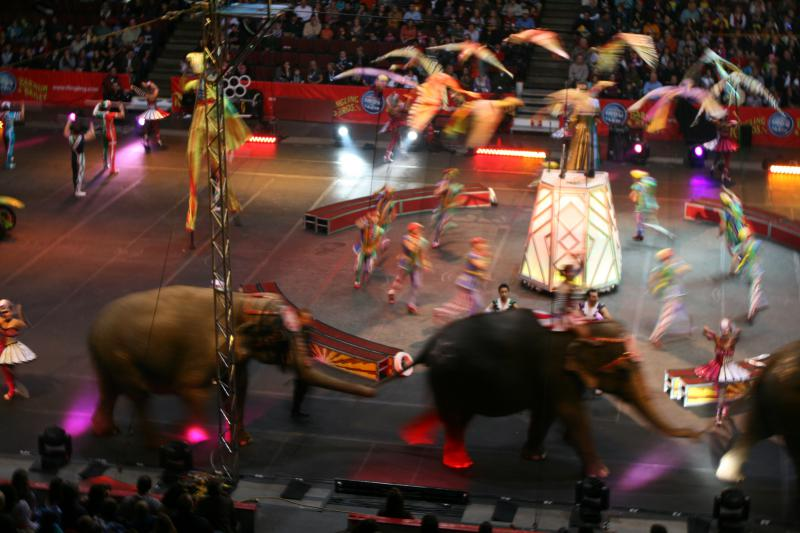 Scene from a 2011 performance of the Ringling Bros. and Barnum & Bailey circus.