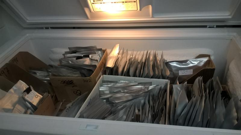 The freezer is filled with heat-sealed foil packets containing the seeds of rare plants, native to New England.