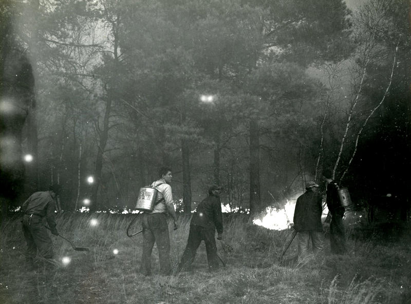 Wildfires in York County, Maine, October 1947.