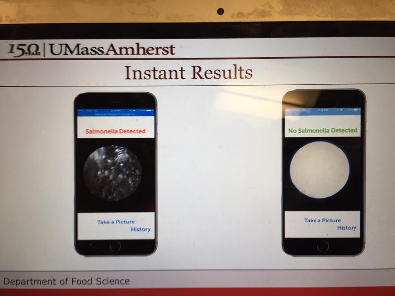 Images from a new app to detect food bacteria.