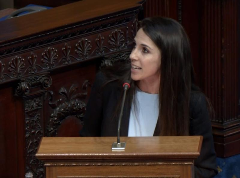 After she was called aside during Thursday's House session, Rep. Diana DiZoglio resumed detailing her personal experience with sexual harassment on Beacon Hill.