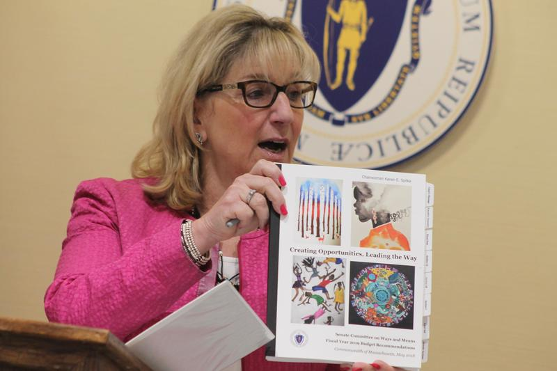 Massachusetts Senate Ways and Means Chairwoman Karen Spilka calls attention to the cover artwork on her committee's fiscal 2019 budget bill, painted by children in the Department of Youth Services Arts Education program.