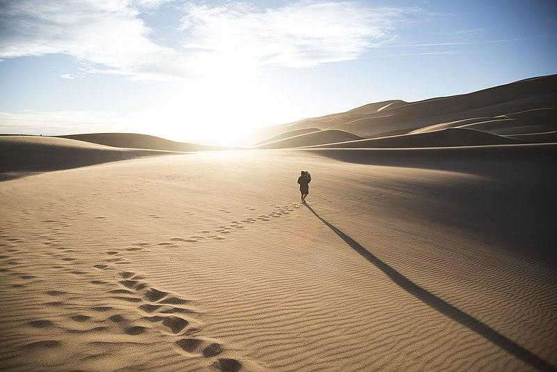 A person walking through the sand.