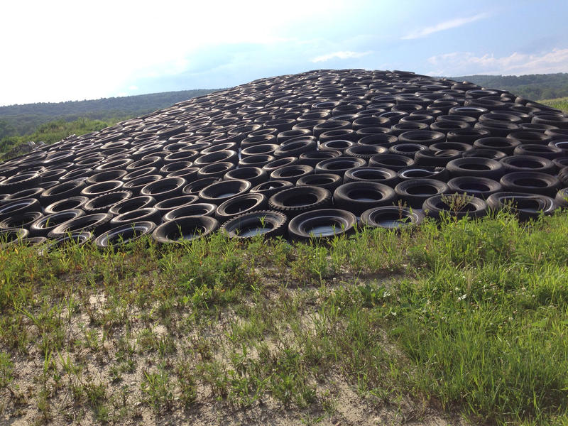 Weighed down by tires and tarp, a hill of field corn is fermenting into corn silage on the Yazwinski Farm in Old Deerfield, Massachusetts. The farm has cut back on the amount of corn silage it produces because it's lost its customer base.