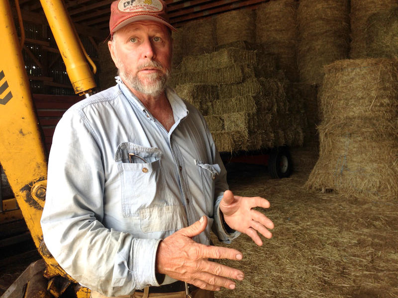 Farmer Norm Davenport in Shelburne, Massachusetts, can't find enough customers to purchase his hay.