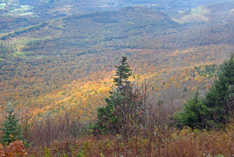 A view from Mt. Greylock in western Massachusetts.