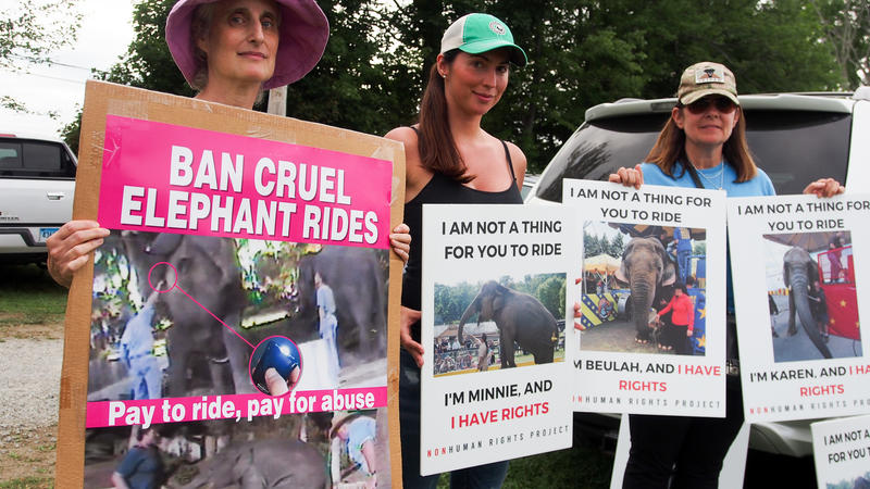 Connecticut residents Jill Alibrandi of Redding, Michelle Catino of Stamford, and Lea Haut of Bridgeport, protest the elephant rides at the Goshen Fair.