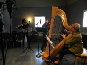 Flutist Debra Reuter-Pivetta, violist Sheila Browne, and harpist Jaquelyn Bartlett are Fire Pink Trio.