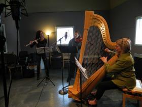 Flutist Debra Reuter-Pivetta, violist Sheila Browne, and harpist Jaquelyn Bartlett are Fire Pink Trio.