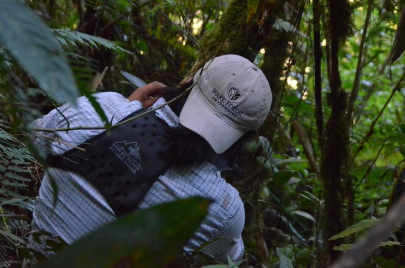 Farfan Rios, a PhD student in biology at Wake Forest, marks a tree in plot eight. Silman's team tracks the growth, reproduction and migration rates of more than 1,200 tree species in its various plots, which spread out down into the tropical lowlands.