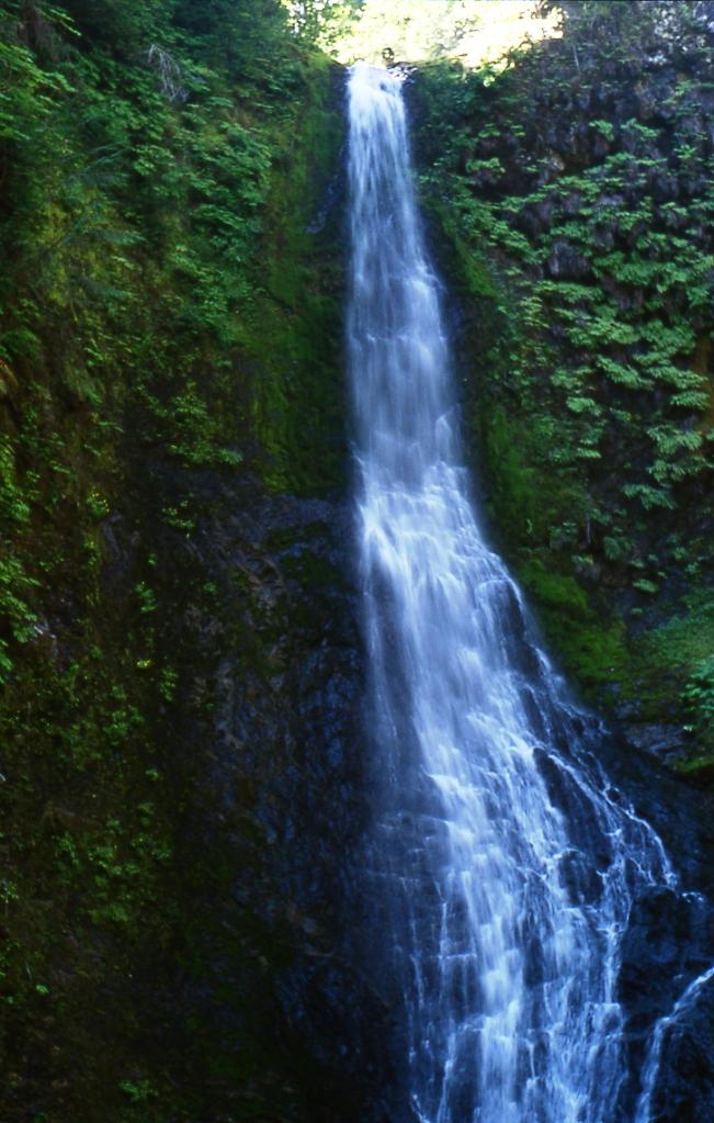 Waterfall on a small tributary of the Clearwater River