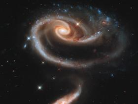 Rose of Galaxies