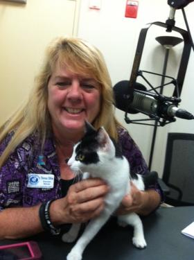 Theresa Clifton, Executive Director Brevard Humane Society with Cassie.  A sweet kitty who is looking for a forever home.