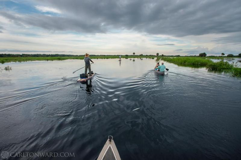 The expedition hits open water. After pushing through the dense and overgrown Cowbone Marsh, the ten-mile paddle through the floodplain seems easy, leading toward Fisheating Bay and Lake Okeechobee.