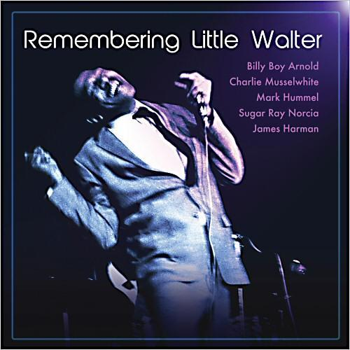 1.  Remembering Little Walter by Various Artists  (Charlie Musselwhite, Mark Hummel, Billy Boy Arnold, and James Harman)