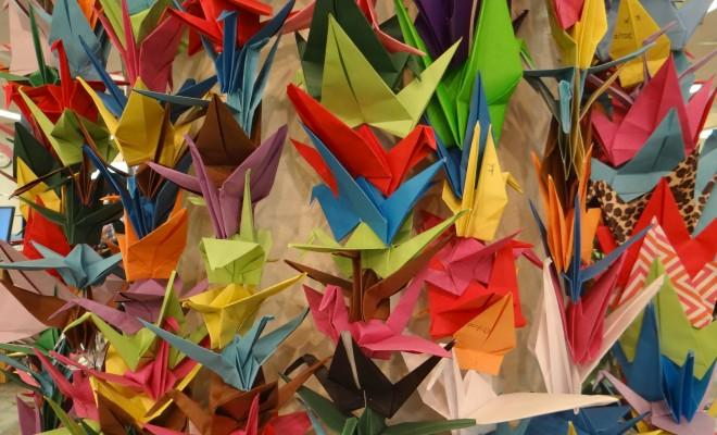 Florida Tech students, staff and faculty helped fold 1,000 origami cranes now on display at Evans Library.