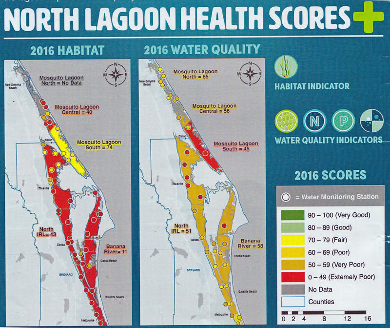 The Health of the Northern Indian River Lagoon