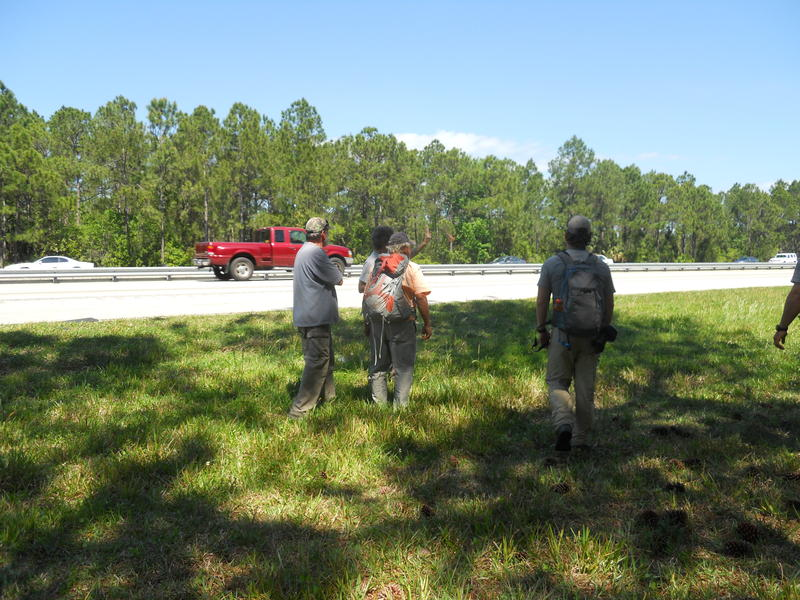 Expedition members wait to cross Interstate 4.
