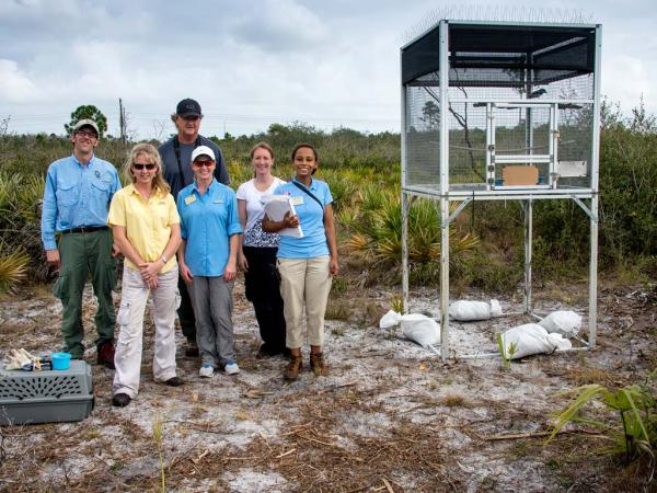 Some members of the scrub jay relocation team: (front row) Maria Zondervan, Michelle Smurl and Amanda Jones; (back row) Craig Faulhaber, David Breininger and Kimberly Tillman.