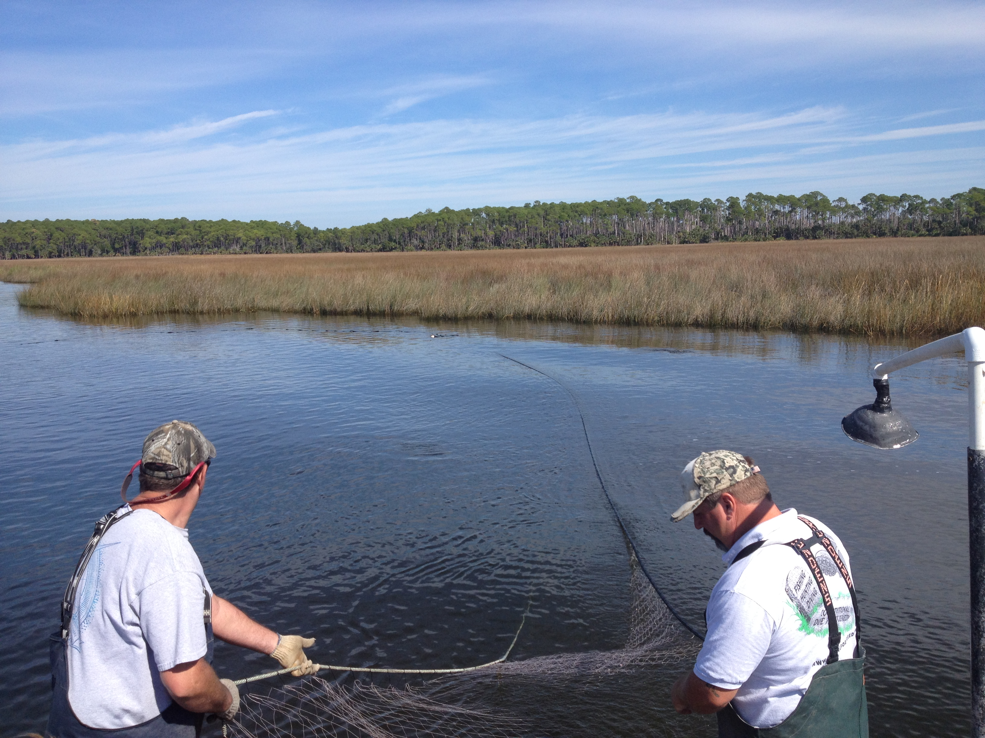 Florida 39 s 20 year old net ban still has anglers and state for Commercial fishing florida