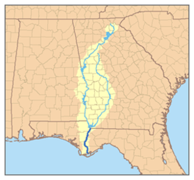 The Apalachicola River Basin starting in the Chattahoochee and Flint Rivers.