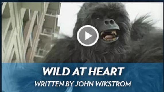 """Screenshot from """"Wild at Heart,"""" by undergraduate FSU film student John Wikstrom."""