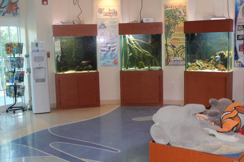 Island Dolphin Care lobby