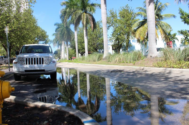 Purdy Avenue in Miami Beach is flooded because of high tides at this time of year. Water from Biscayne Bay backs up through the storm water system into the streets.