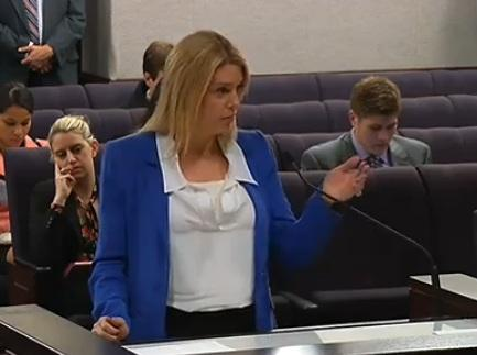 Attorney General Pam Bondi talking to lawmakers Tuesday about banning 22 new synthetic substances.