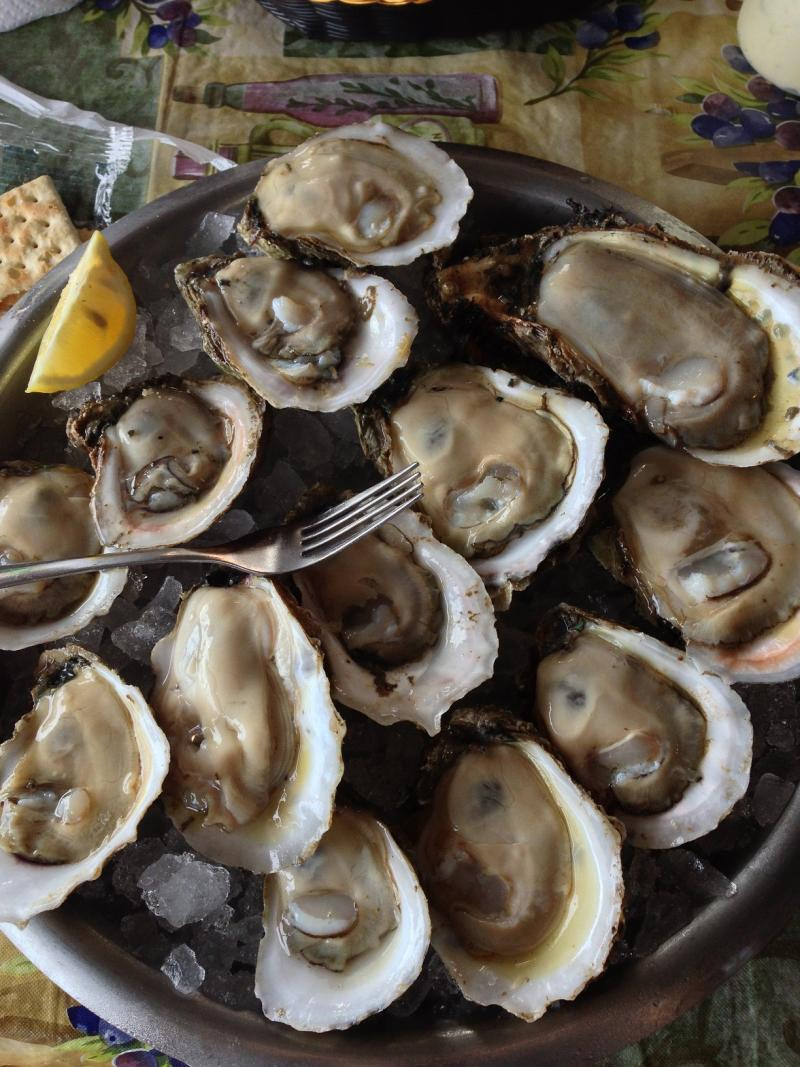 Apalachicola Bay oysters are a significant economic driver for the area. But the crop has been struggling in recent years.