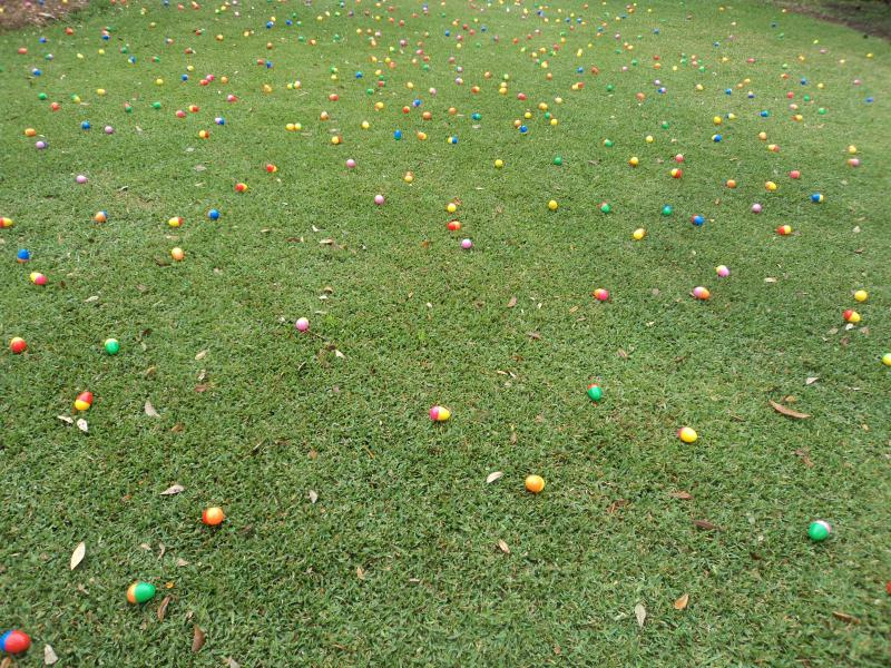 Part of the Governor's lawn that's scattered with just a fraction of the thousands of eggs for Saturday's Egg Hunt