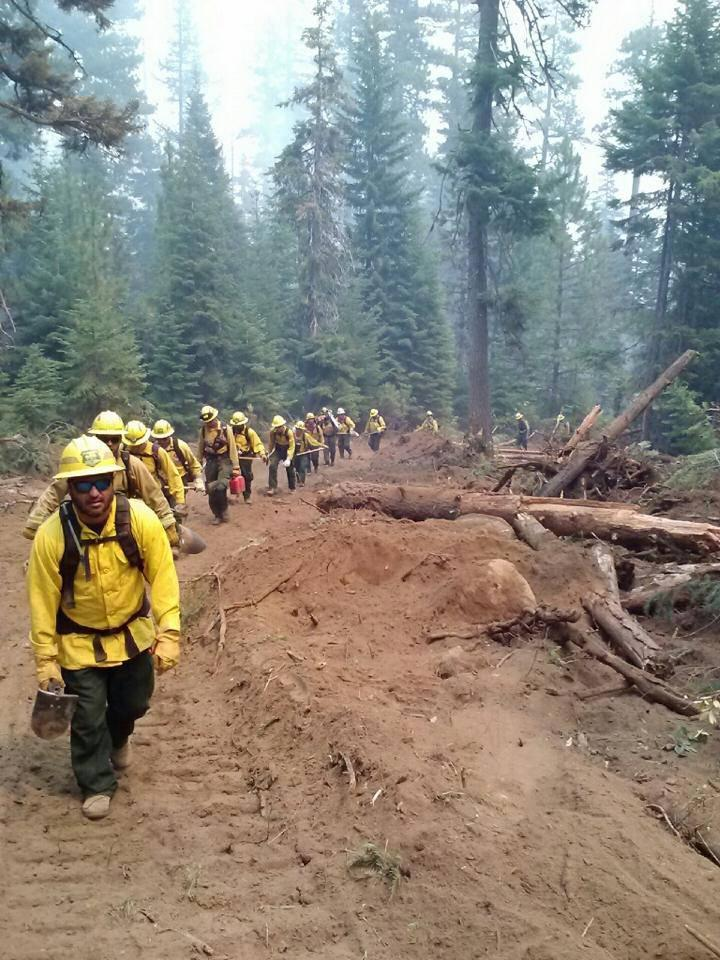 Hand Crews of Florida Forest Service firefighters on the Green Ridge Wildfire in Sisters, OR Thursday.