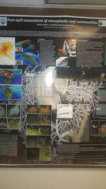 A reasearch abstract on the 2010 Deepwater Horizon Oil Spill hangs on the wall of the FSU Oceanography lab building