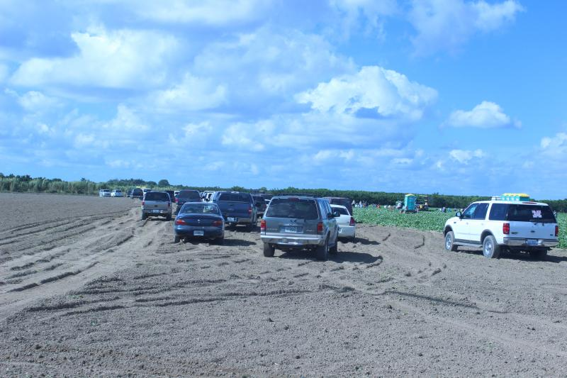 Agriculture fields buffer the road along the highway into Everglades National Park