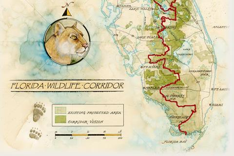 Florida Wildlife Corridor: Everglades to Okefenokee