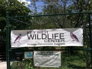 Key West Wildlife Center