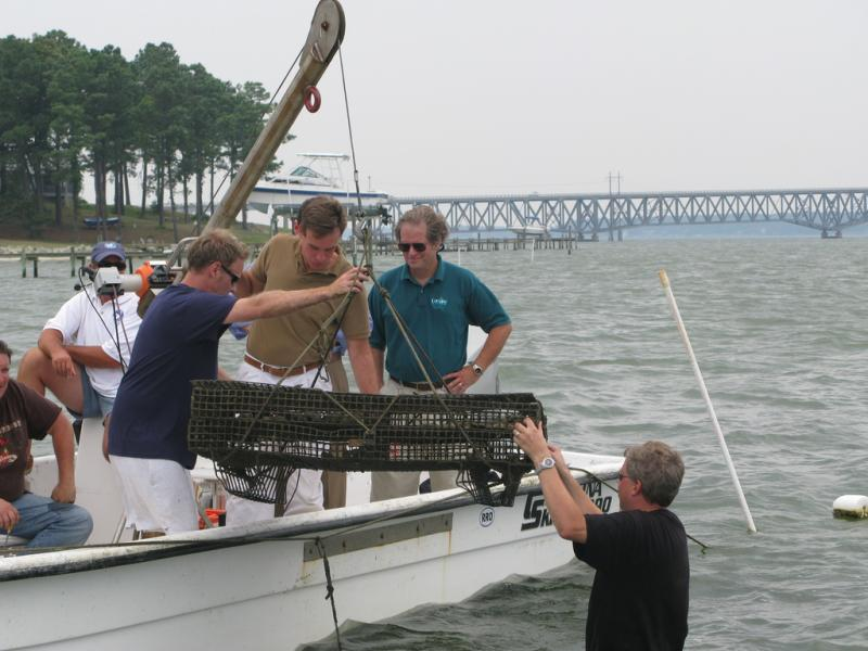 oyster cage on boat
