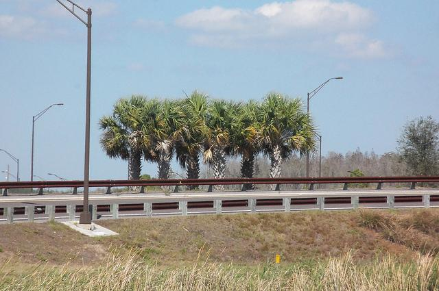 Florida guardrails