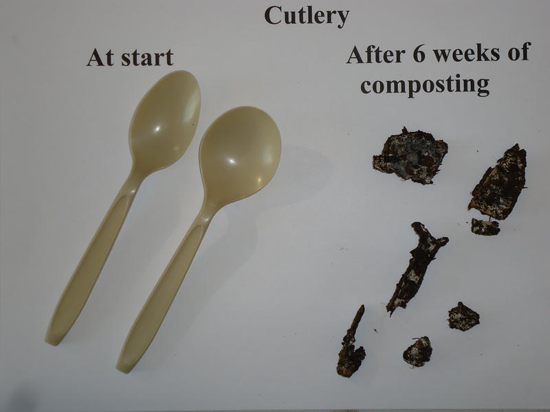 biodegradable silverware before and after