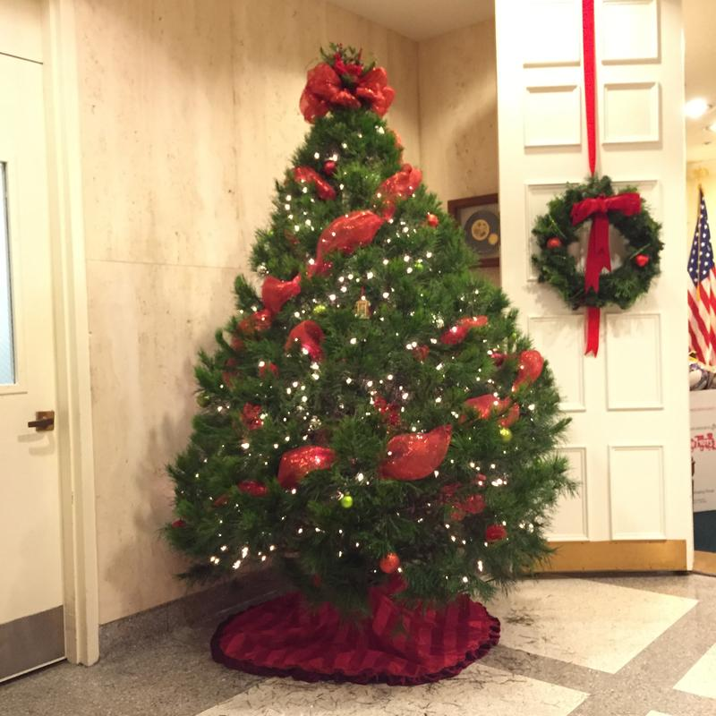 Governor Rick Scott's Tree