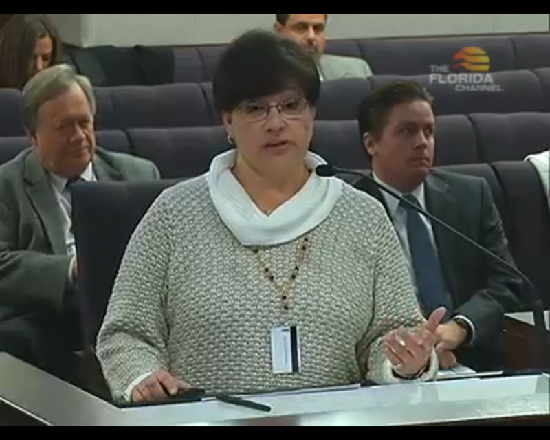 Dianne Gutierrez-Saccetti speaking before the Senate Transportation Committee.