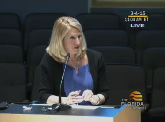Florida Education Commissioner Pam Stewart talks testing, glitches before a Senate Education Committee.