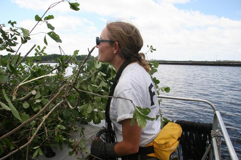 An FWC Biologist is installing fish attractors at Deer Point Lake