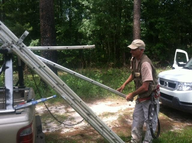 Jim Cox unloads his ladder system and prepares to climb to a woodpecker nest in a tree.
