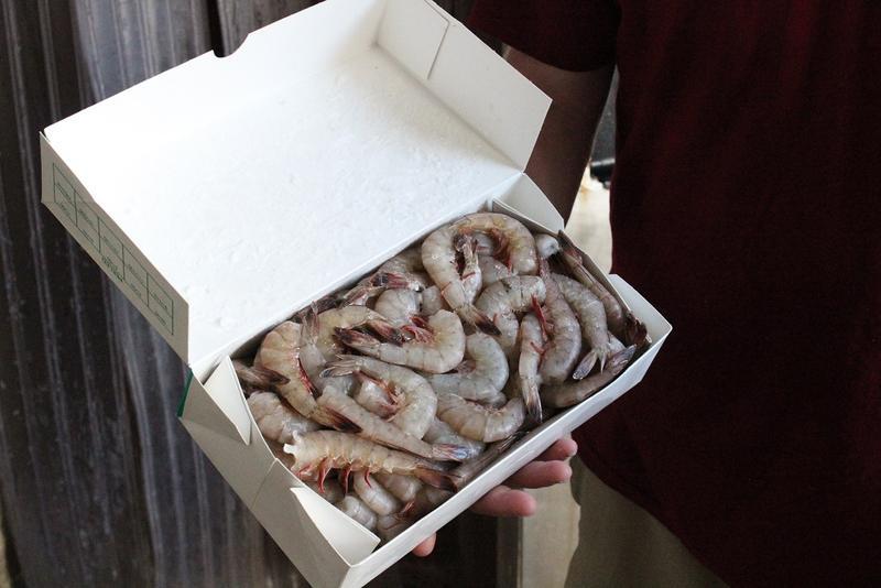Fresh, Apalachicola shrimp