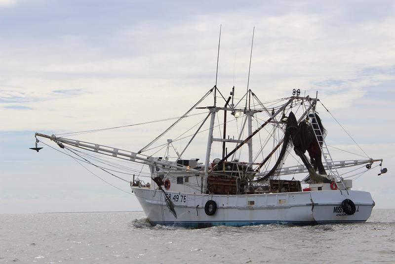 A shrimp boat makes its way into Apalachicola Bay, heading for Key West