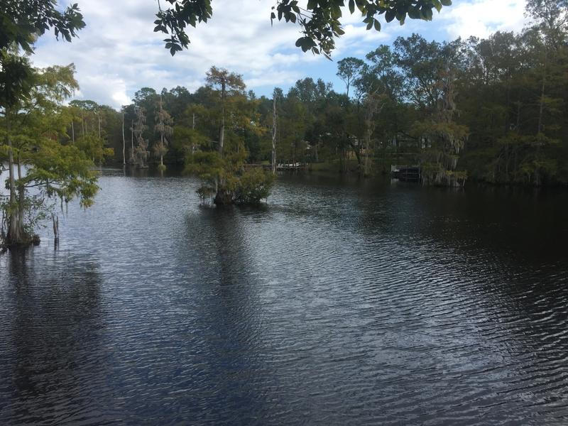 A view of Lake Beluthahatchee from Stetson Kennedy's back porch.