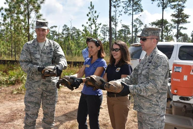 Staff with the Florida Fish and Wildlife Conservation Commission, U.S. Fish and Wildlife Service and Eglin Air Force Base prepare to release four relocated gopher tortoises at Eglin.